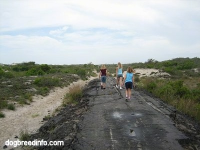 Three people are walking on the Old Asphalt Road