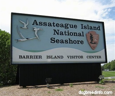 Sign that says 'Assateague Island National Seashore Barrier Island Visitor Center'
