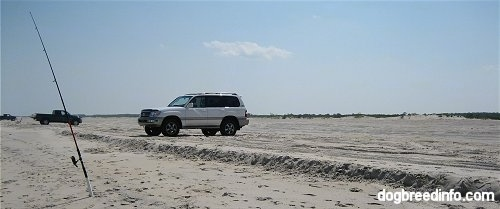 Two Cars are parked on the beach of Assateague
