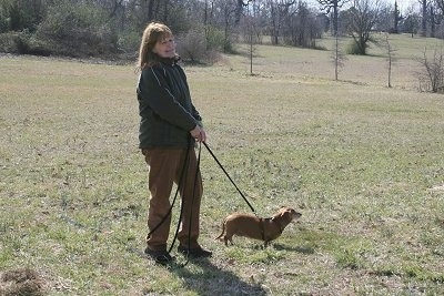 Margo with Weezil the Dachshund on a leash in a field with a human holding the lead
