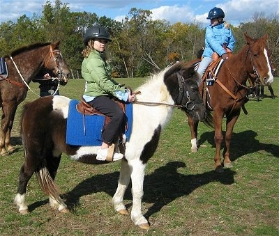 The right side of a brown and white Paint Pony that is standing in grass. It has a girl in a green coat sitting on its back. To the right of them is a brown with white Horse that has a girl in a blue coat sitting on it. The head of a brown Horse is behind them. They are at a western horse rodeo.