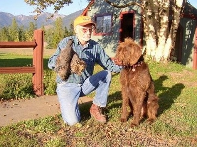 Chewie, the Pudelpointer with is owner holding one of his birds