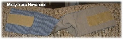 A twisted Belly Band on the top side of a couch to show the blue front and the tan backing with velcro