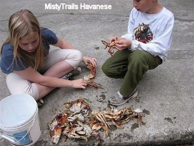 A boy in a white shirt is kneeling next to a blonde haired girl sitting on a concrete surface. They are cleaning crabs.