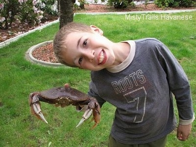 A boy is holding a Dungeness crab, the boys head is laying over the back of a crab, he is smiling.