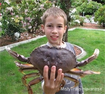 A boy is standing in a yard and he is holding a Dungeness crab in its hand. The boy looks very proud of himself.
