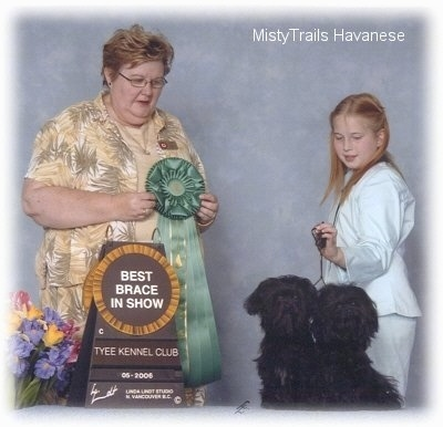 Girl in a white pant suit is holding the leash of two black Havanese dogs. The dogs are sitting and looking forward, across from all of them is a lady holding a green ribbon.
