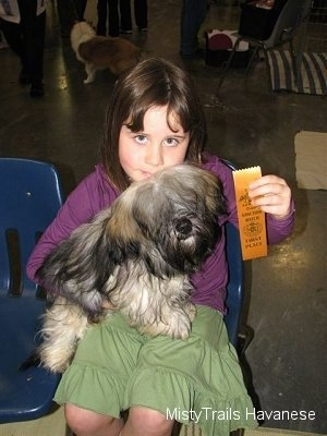 A girl in a purple shirt is sitting on a blue chair and there is a dog with its front paws up against her lap. The girl is holding a ribbon in the air.