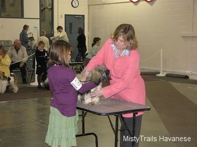 A girl in a purple shirt is touching a dog that is standing on a table. On the otherside of the table there is a lady in a pink jacket that is touching the dog. There are bystanders on chairs in the background.