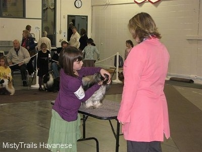 A girl in a purple shirt is touching the mouth of a dog that is standing on a table in front of her. There is a lady in a pink jacket looking down at them.
