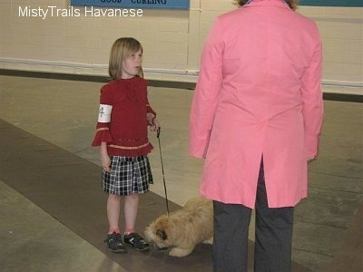 A girl in a red shirt is standing on a long rug and she is holding the leash of a tan dog that is looking at her feet. In front of the girl is a person in a pink jacket. The little girl has a number taped around her upper arm.