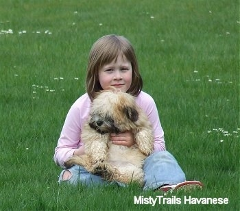 A girl in a pink shirt is sitting in a field and there is a tan with white Havanese puppy sitting on her lap being held belly out.