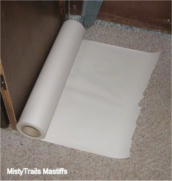 The potty area is lined with long sheets of paper that can be rolled up for easy cleanup