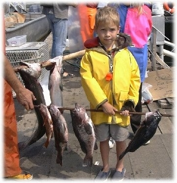 A boy is standing on a dock and he is holding a stick full of freshly caught rock cod fish.