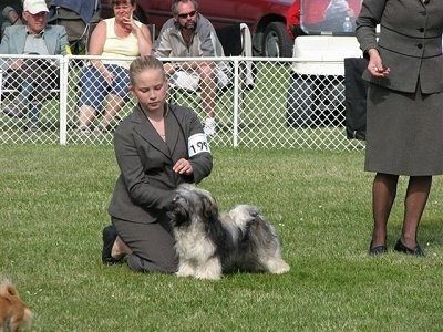 A blonde haired lady is kneeling behind a black and grey dog that is posing in a stack.