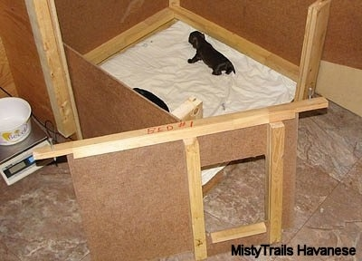 Whelping Box Removable Front - (design MistyTrails Havanese)