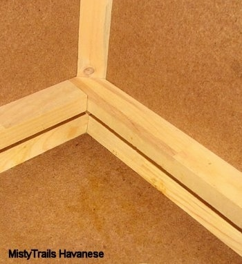 Corner of the Whelping Box - (design MistyTrails Havanese)