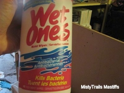 A container of Wet Ones antibacterial wipes