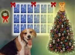 Lucy the Beagle in front of a photoshopped Christmas background