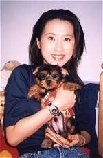 A lady is holding a small black and tan Silky Terrier puppy in her hands. She is exposing the belly of the puppy.