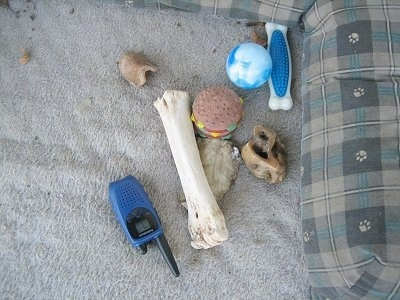 A Walkie Talkie with all of Bruno the Boxer Puppys toys in a dog bed