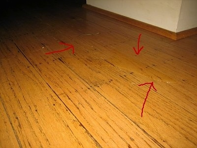 how to get rid of dog smell on wood floors