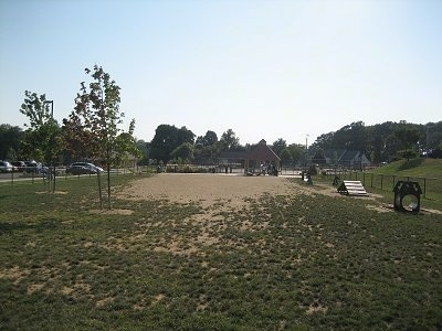 Picture of Dog Park