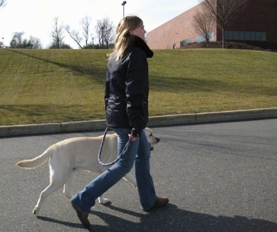 Sharon walking with Henry the Labrador Retriever