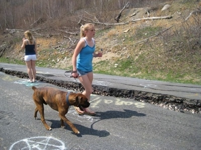 Amie leading Bruno the Boxer down the roads of Centralia next to a crack in the road