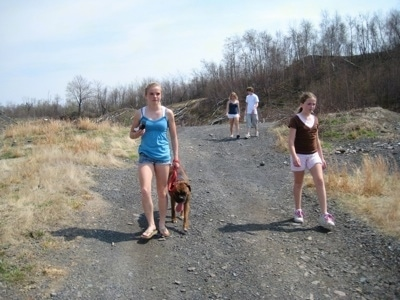 Amie leads Bruno the Boxer down a charred path with Sara