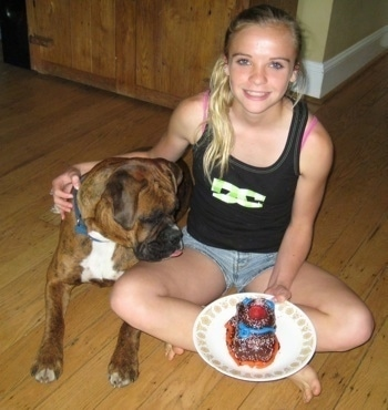Amie sitting on the floor with her arm around Bruno holding a homemade pastry sitting next to Bruno the Boxer who is staring at the cake