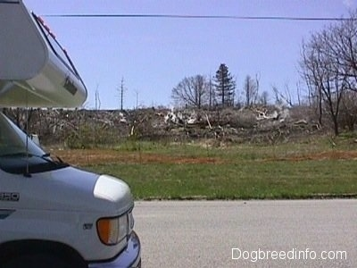 A Camper on a road in front of a field of dead trees