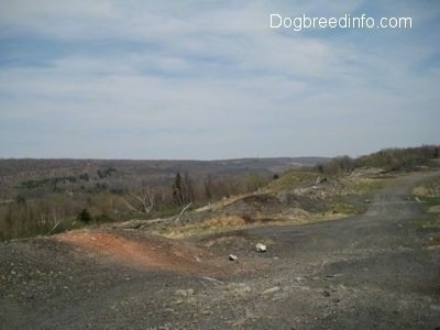 A dirt path overlooking Centralia Pa