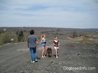 Three People and Bruno the Boxer standing on a dirt path