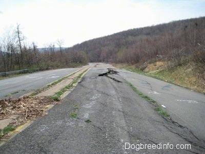 View looking down Highway 61 - A damaged road in Centralia PA