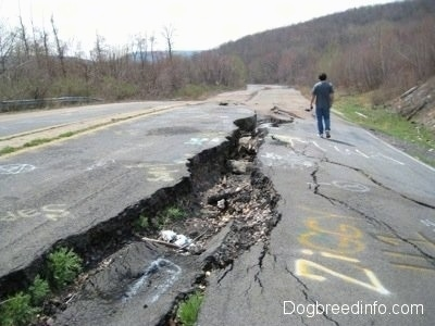 A person walking alonside the huge crack in highway 61