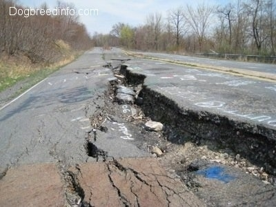 Highway 61 - The road is severely damaged