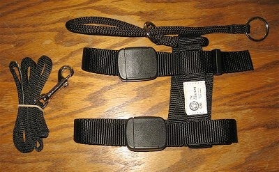 Top down view of an Illusion Dog Training Collar.