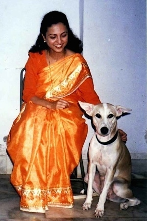 A smiling lady in an orange sari is sitting in a chair next to a short-haired, tan with white Pariah dog that is sitting next to her. The lady is petting the dog. The dog's large ears are standing out to the sides.
