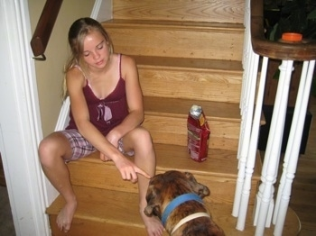 Amie giving Bruno Peanut Butter while sitting on the staircase