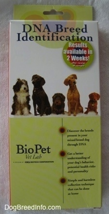Dog breed Identification Kit box