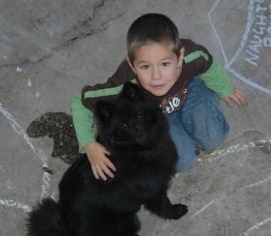 A fluffy black German Spitz is sitting outside next to a boy who is hugging it.