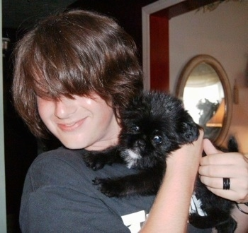 A black with white Griffonese puppy is being held in the arms of a teenage boy who is smiling and looking away from the puppy. The boy's front bangs are covering his eyes.