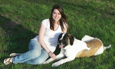 A smiling brown-haired lady is sitting in a field next to a large brown with white and black Saint Bernard puppy that is laying next to her.