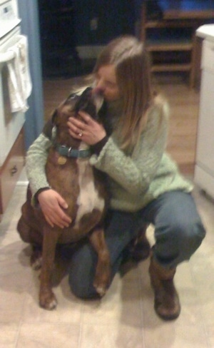 Bruno the Boxer licking a kneeling ladies face