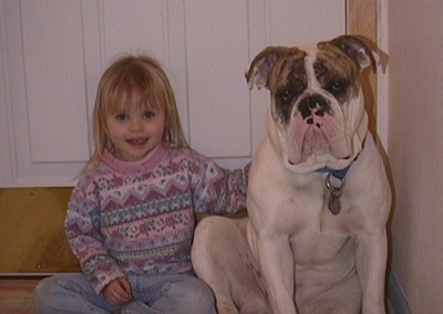 A white with brown and black Bulldog is sitting next to a little girl on a couch.