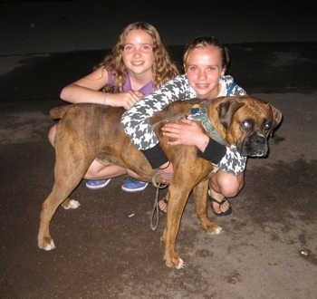 Bruno the Boxer being hugged by Amie and Sara for a picture