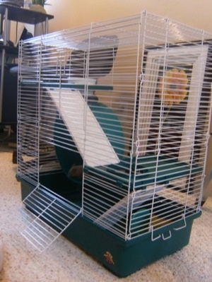 A three level white wire cage is standing on a carpet and the cage door is open.