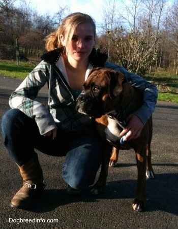 Bruno the Boxer standing on a blacktop getting a hug from a lady who is kneeling next to him
