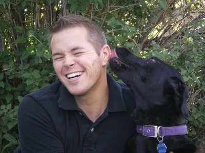A black Labrador Retriever is wearing a purple collar sitting and licking the ear of a man in a blue shirt who is laughing. There is a green bush behind them.